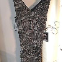 Brand New Black and White Express Dress Size M Nwt 69.00 Photo