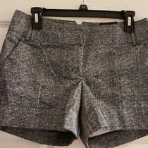 Brand New Express Dress Shorts Black & White Cuffed Leg Size 4  Photo