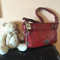 Brand New Fossil Bag  Photo