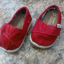 Brand New Infant Toms Photo