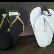 Brand New Ipanema Womens Sandal From Brazil Photo