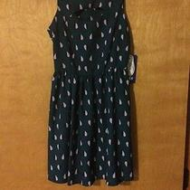 Brand New Keds Dress for Juniors Size Xs Photo