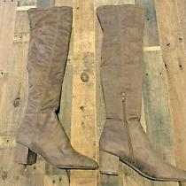 Brand New Steve Madden Brinkley Over the Knee Boot in Taupe Size 9.5 Photo