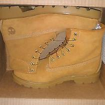 Brand New Timberland Boots Photo
