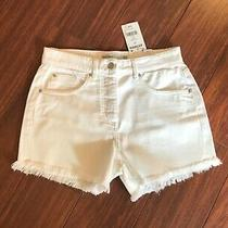 Brand New With Tags Ladies Next White Shorts Size 10 Photo
