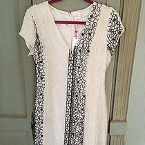 Brand New With Tags Parker Dress Size L Photo