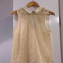 Brand New With Tags Top Shop Lace Peter Pan Collar Top (Zara Brandy Melville) Photo
