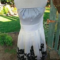 Brand New Wtags Black and White Store Flower Strapless Dress 10 Photo
