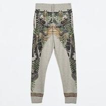 Brand New Zara Flower Print Trousers Givenchy Versace Balmain Style Photo
