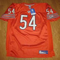Brian Urlacher Chicago Bears Reebok on Field Authentic Jersey Sz 54 - Orange New Photo
