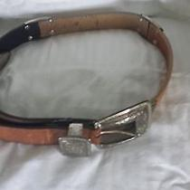 Brighton 3 Tone Leather Belt Photo