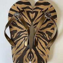 Brighton Animal Print Flip Flops Sandals W/silver Alligator Brown/tan Sz L 9/10 Photo