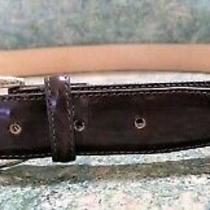 Brighton Belt Brown Leather W Silver & Gold Tone Metal Hardware Men's Sz 38 Photo