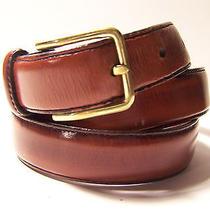 Brighton belt...sz.34...mahogany Brown Leather Photo