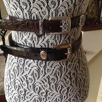 Brighton Belts Medium (2 Belts for One Price) Photo