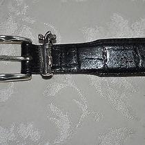 Brighton Black Crocodile Leather Golf Beltsilver Golf Clubs30 14083onyx Photo