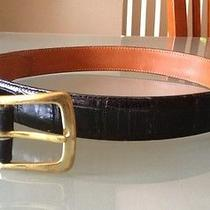 Brighton Black Moc Croc Aligator Skin Belt With Solid Brass Buckle Sz 34 Usa Photo