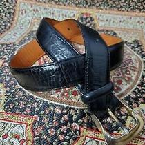 Brighton Black Vintage Embossed Calfskin on Saddle Leather Belt Size Medium Photo
