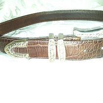 Brighton  Brown  Genuine Leather Belt    Size M  Photo