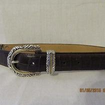 Brighton Brown Leather Belt Photo