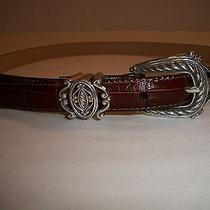 Brighton Brown Leather Belt Sz Ml 32 Silver Toned Buckle Croc Design 42 Usa Photo