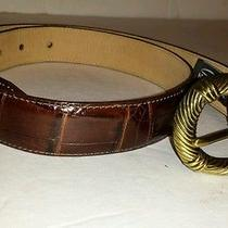 Brighton Brown Leather Crocodile Print Belt Size Made in the Usa  Photo