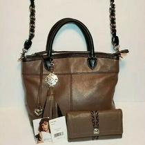 Brighton Carson Mushroom & Black Leather Shoulder Handbag Barbados Wallet 480 Photo