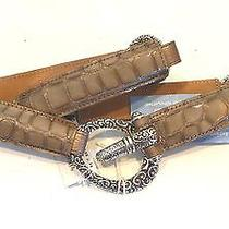 Brighton 'Cher' Stretch Belt Platinum Taupe Patent Croco Leather 72 Size 34 Nwt Photo