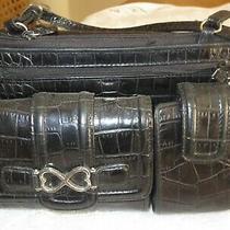 Brighton Crossbody Purse Handbagblack Croc Leatherexcellent Photo