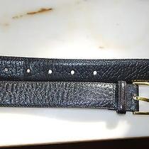 Brighton Elk Grain Black Cowhide on Glove Leather  Brass Buckle sz.38  36003 Usa Photo