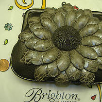 Brighton Gray Grey Leather Sunflower Pouch Wallet Purse Nwt With Chain Strap Photo