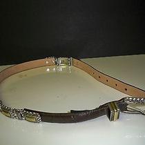 Brighton Ladies Brown Leather Belt 44209 Photo