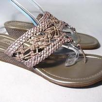 Brighton Lagoon Wedge Slide Sandal Women Size 8 M Leather Worn Once Photo