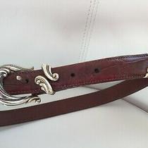 Brighton - Medium Brown Leather Belt - Silver Hardware 24507   Photo