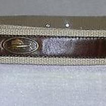 Brighton Mens Fish Belt Size 44 Photo