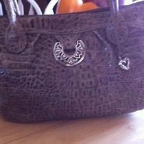Brighton Purse Handbag Beautiful Photo