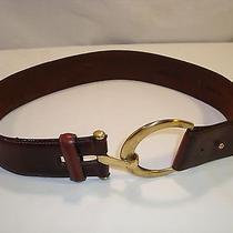 Brighton Saddle Brown Leather Harness Belt Brass Buckle Stirrup Size M Medium Photo