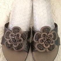 Brighton Sandals Clover Size 8n Photo