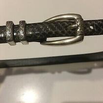 Brighton Skinny Snakeskin Leather Dark Gray W/silver Buckle Belt  C3603 sz.l/34 Photo