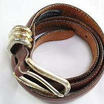 Brighton Solid Brown Belt Photo