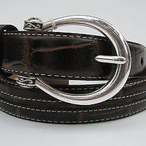 Brighton Spellbound Belt Ladies Size 32 Free Ship Espresso Croco Leather Nwt Photo
