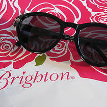 Brighton  Sunglasses Black
