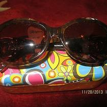 Brighton Sunglasses