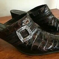 Brighton Tudor Mules Bronze-Chocolate Croc Leather Shoes Block Heel Sz 8 M 200 Photo
