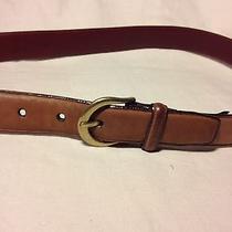 Brighton Unisex Brown Nu Buc Glove Cowhide  Belt -Style 48108--Size 36 Photo