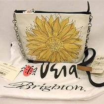 Brighton Vera Sunset White/blk Leather Pouch/crossbody Emb Sunflower E97953 Nwt Photo