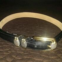 Brighton Women's Black Genuine Leather Lizard Embossed Belt Size S/28 Photo