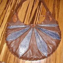 Brown and Navy Leather Purse Photo