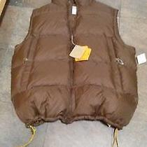 Brown  Bubble Timberland Vest Photo