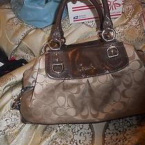Brown Coach Purse Photo